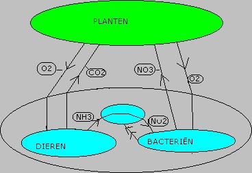 filter_biologisch_evenwicht