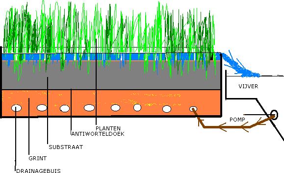 Filters vijverflora hellendoorn for Visvijver bakken