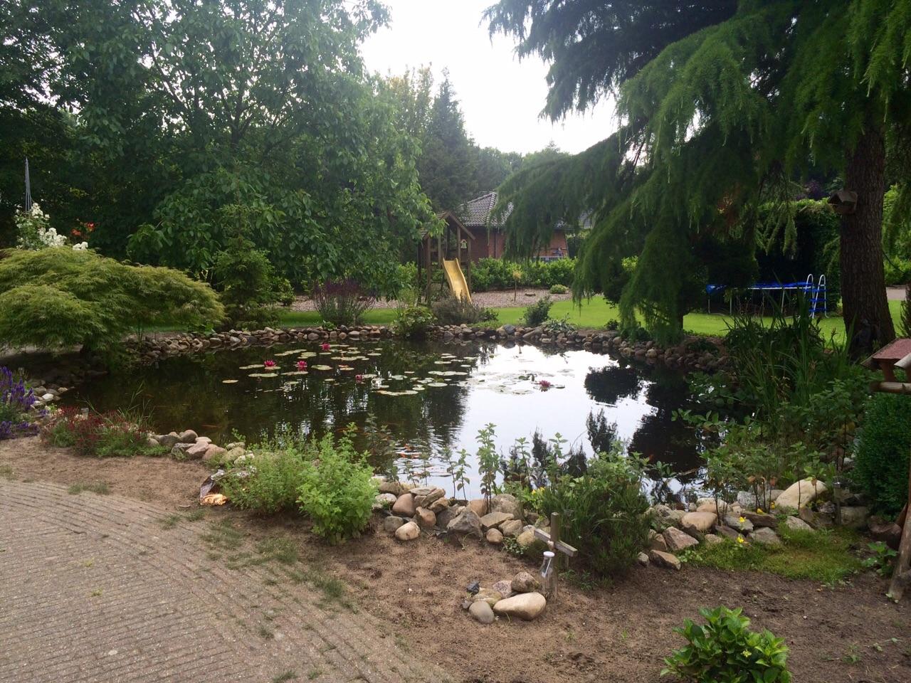 Vijver vijverplanten en vijvertechniek specialist for Vissen vijver
